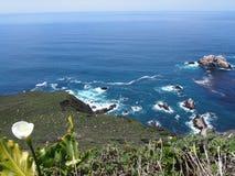 Littoral de Big Sur Image stock
