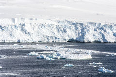 Littoral de l'Antarctique Photo stock