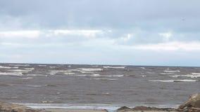 Littoral de mer avec des vagues et oiseau de vol en nuages vidéo Éclaboussure marine des vagues sur la plage volcanique de sable  banque de vidéos