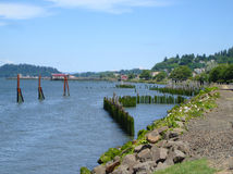 Littoral du fleuve Columbia photo stock