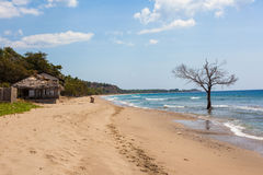 Littoral du Timor oriental Photo stock