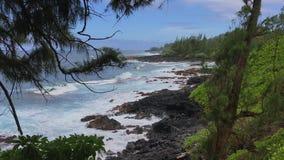 Littoral rocailleux et d'isolement d'Hawaï un jour d'été banque de vidéos