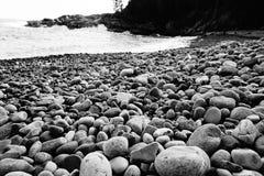 Littoral rocheux Photo libre de droits