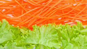 Littuce and carrot. Royalty Free Stock Photo