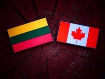 Litwin flaga z kanadyjczyk flaga na drzewnym fiszorku odizolowywającym zdjęcie stock