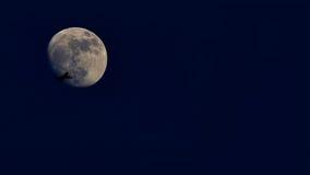 Lityaschy samolot na tle księżyc Zdjęcie Royalty Free