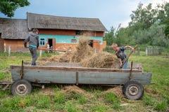 Litynia村庄,乌克兰- 2018年6月02日:两个年轻男孩投掷干草在推车外面,库存家畜的干草 生活在村庄 免版税库存图片