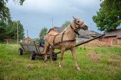 Litynia村庄,乌克兰- 2018年6月02日:乘坐在一个老木推车的两个年轻男孩,库存家畜的干草 在别墅的生活 库存照片