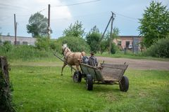 Litynia村庄,乌克兰- 2018年6月02日:乘坐在一个老木推车的两个年轻男孩,库存家畜的干草 在别墅的生活 库存图片