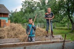 Litynia村庄,乌克兰- 2018年6月02日:站立在推车的两个年轻男孩,倾斜在叉子,库存家畜的干草 Lif 库存图片