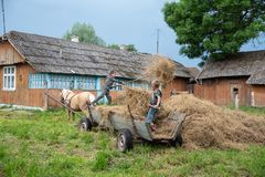 Litynia village, Ukraine - June 02, 2018: Two young boys throw hay out of a cart, stocking hay for livestock. Life in a village. Litynia village, Ukraine - June stock images