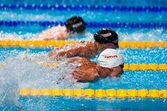 Liu Zige. BARCELONA - JULY  31: Liu Zige  ( China)   in action during Barcelona FINA World Swimming Championships on July 31, 2013 in Barcelona, Spain Royalty Free Stock Image