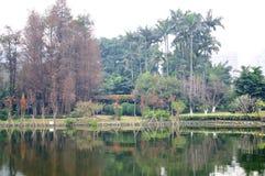 Liuhua lake park scenery Royalty Free Stock Photo