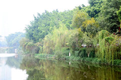 Liuhua lake park scenery Royalty Free Stock Photos