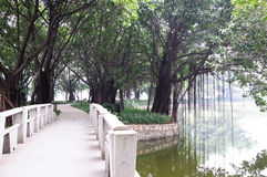 Liuhua lake park scenery Stock Image