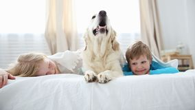 Liv av hemhjälphusdjur i familjen liten syskongrupplögn med deras hund på sängen i sovrummet