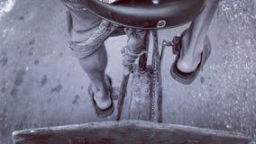 Liv cyklar Arkivfoton
