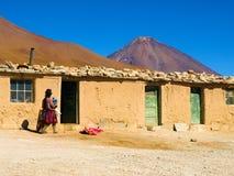 Liv på Altiplano Arkivfoton
