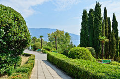 Livadia Park. Landscaping. Yalta. Crimea. Ukraine. Livadia Palace and Park - a museum of architectural monuments and landscape art. Yalta, Crimea, Ukraine Royalty Free Stock Photos