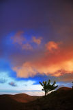 livadiyskom εθνικό ηλιοβασίλεμα πά Στοκ Φωτογραφίες