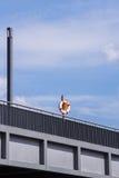 Livboj på en bro Fotografering för Bildbyråer