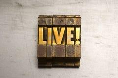 live Fotografering för Bildbyråer