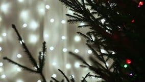 Live Christmas träd med flimrande ljus på stadsgatan Närbild nytt temaår stock video