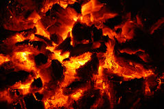 Live coals. Abstract background with the live coals Stock Photography