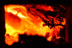 Live coals. Burning in the furnace coals Stock Image