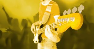 Live Concert. Concert. Guitarist In Front Of Crowd Of Fans Royalty Free Stock Photos