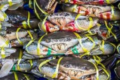 Live Crab da vendere Immagine Stock