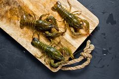 Live crayfish run away from the wooden chopping Board. Black background, top view, space for text. stock images