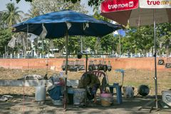 Live Fish Seller and Sleeping Dog Stock Photography