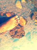 Live fish underwater. My feet bite small lots of fish Royalty Free Stock Photography