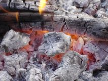Live Flames of Fire Royalty Free Stock Images