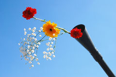 Live flowers stick out of a gun barrel. Royalty Free Stock Photography