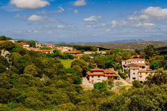 Live in the green. Numerous houses arranged in the middle of nature Royalty Free Stock Image
