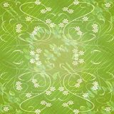 Live green spring or summer background with subtle gentle floral motif and white curves Royalty Free Stock Photo