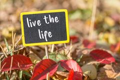 Live the life sign. Live the life wooden black sign in autumn leaves , motivation concept royalty free stock photo