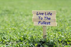 Live life to the fullest. Wooden sign in grass,blur background Stock Photo