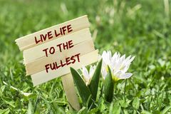 Live life to the fullest. On wooden sign in garden with white spring flower stock photos