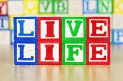 Live livstid som stavas ut i alfabetbyggnadsblock Arkivbilder