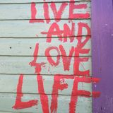 Live and love life Stock Photography
