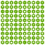 100 live nature icons hexagon green. 100 live nature icons set in green hexagon isolated vector illustration Stock Photos
