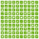 100 live nature icons set grunge green. 100 live nature icons set in grunge style green color isolated on white background vector illustration vector illustration