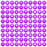 100 live nature icons set purple. 100 live nature icons set in purple circle isolated on white vector illustration stock illustration