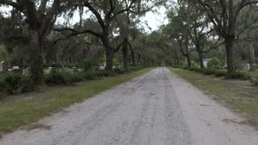 Live Oak Lined Road em Bonaventure Cemetery filme