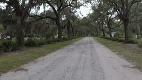 Live Oak Lined Road i Bonaventure Cemetery arkivfilmer