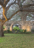 Live Oak Trees and Spanish Mission Wall. On quiet foggy morning Royalty Free Stock Photo