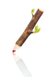 Live pencil. Red pencil made from twig with fresh green leaves Stock Photo